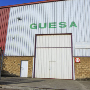guesa1